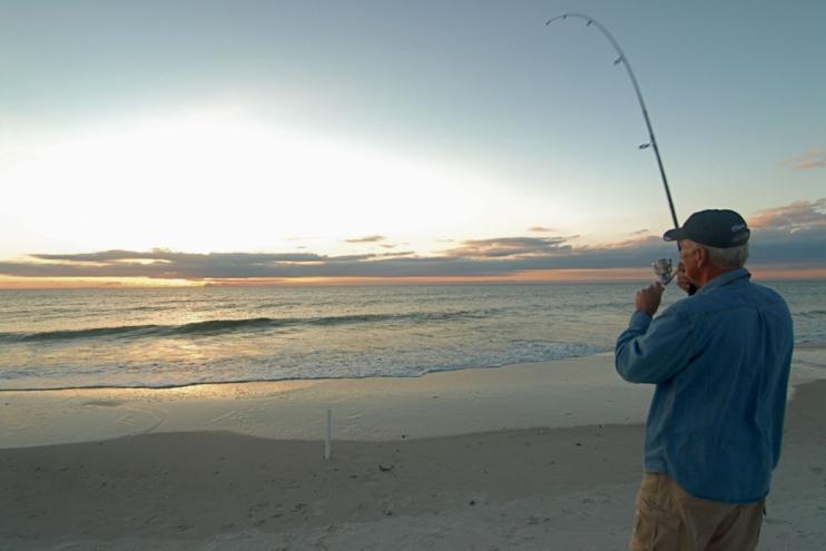 Gulf breeze barrier dunes 15 cape san blas forgotten for Cape san blas fishing