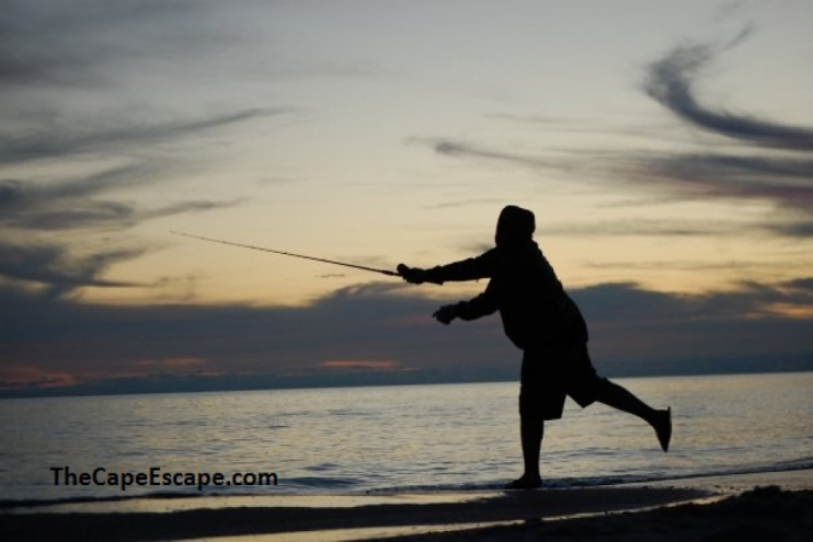Paradise barrier dunes 11 cape san blas forgotten for Surf fishing destin fl